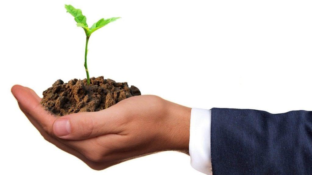 help things grow charity stream